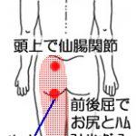 他部位からの影響が強い坐骨神経痛の改善 30代男性